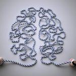 Academia do Cérebro - Núcleo Paulista de Psicologia Aplicada